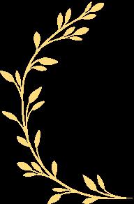 white-branch